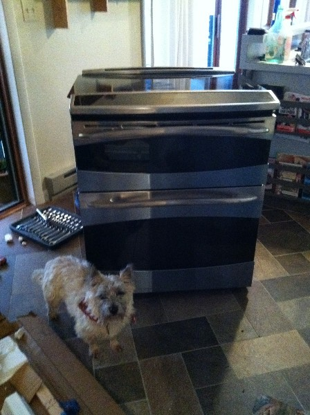 shiney new double oven