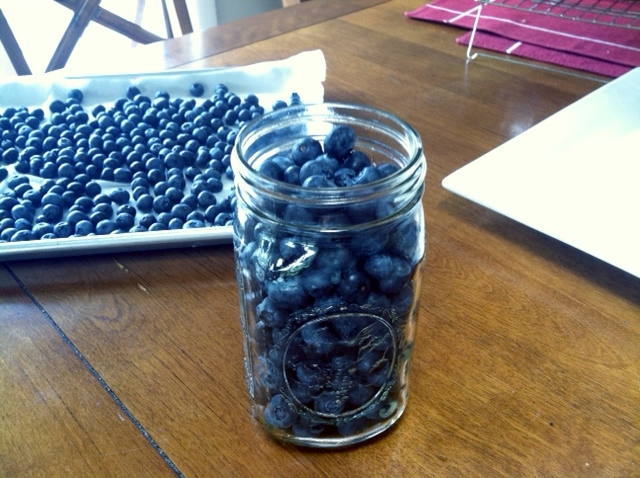 blueberry jar